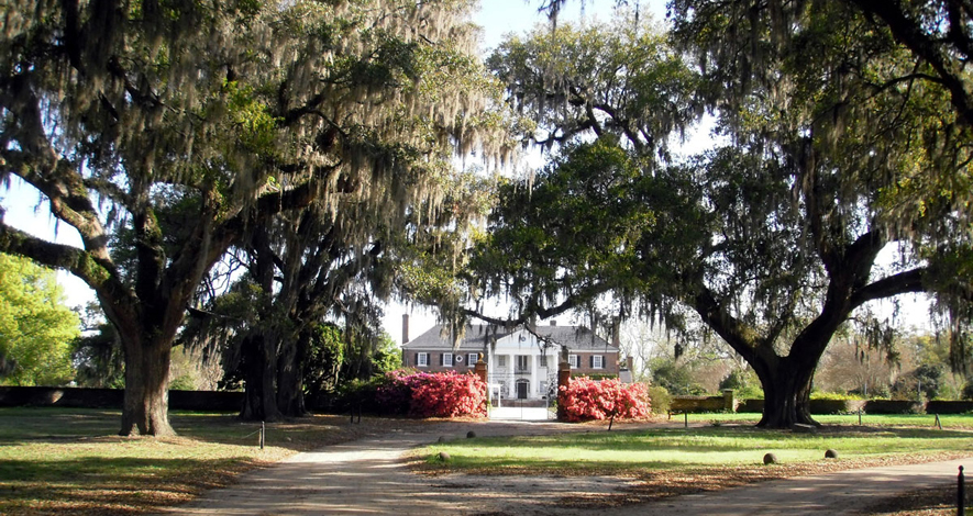 OpEd: Conservation Bank's Effectiveness Showcased in Boone Hall Protection